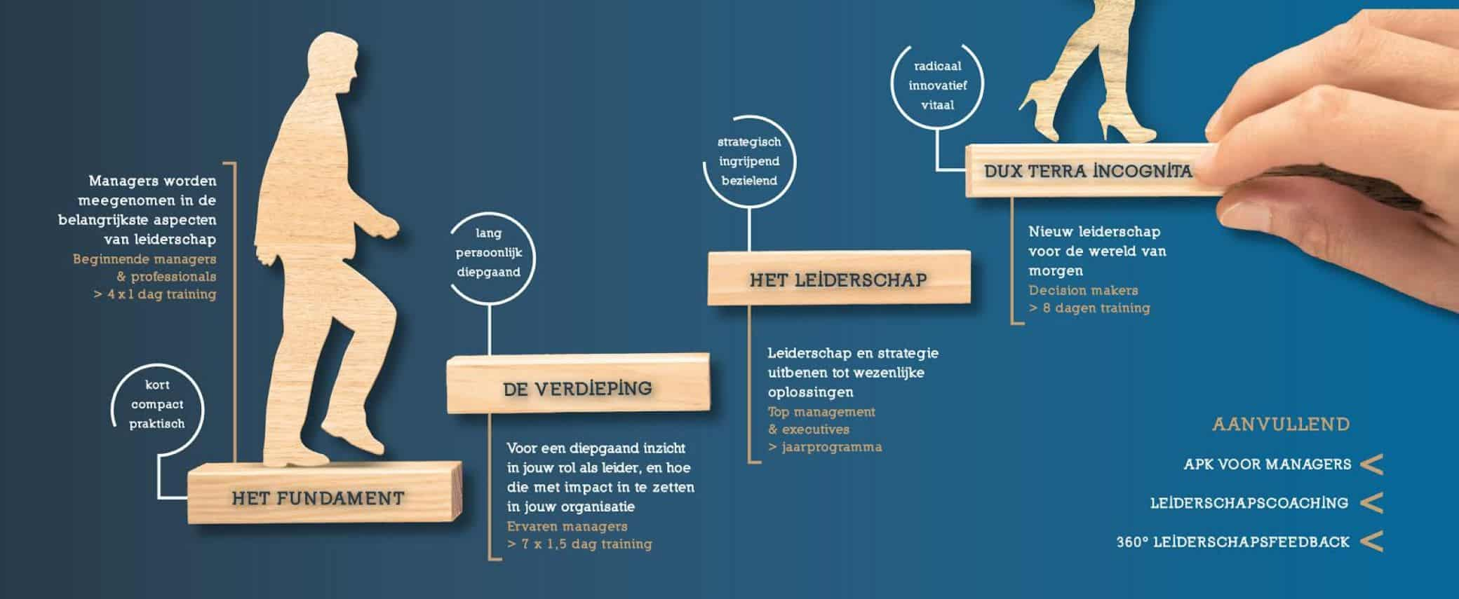 Leiderschapsprogramma's infographic